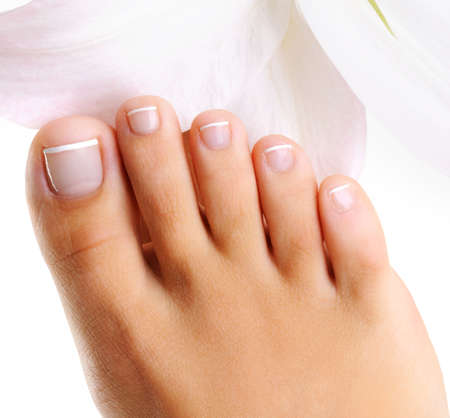 female feet: well-groomed toys on a single female foot with french pedicure on a  white background