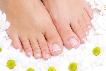 pedicura: Flores alrededor de hermosos pies femeninos con la pedicura de franc�s