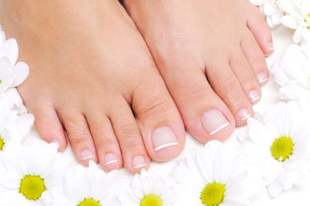 human toe: Flowers around beautiful female feet with the french pedicure Stock Photo
