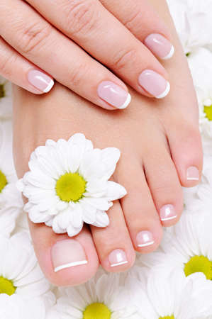 manicure and pedicure: female hand with beautiful french manicure on the pure and clean foot