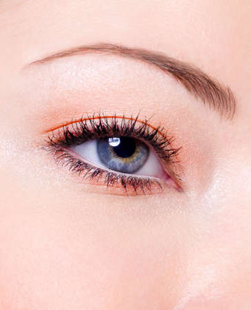 Modern fashion makeup of a female eye - macro shot Stock Photo - 6101740