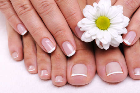 Beautiful well-groomed female toes with flowers  photo