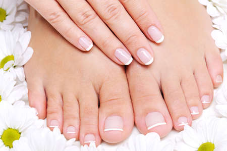 Beauty treatment of a female feet with camomile's flower around it
