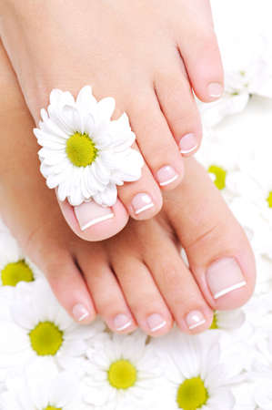 camomiles: Clean and well-groomed female feet with beautiful toenails