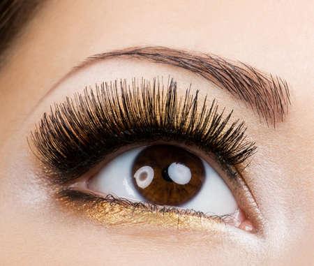 Modern fashion makeup of a female eye - macro shot Stock Photo - 6808889