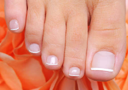 Single female foot with french pedicure on a well-groomed toys on a flowers background  photo