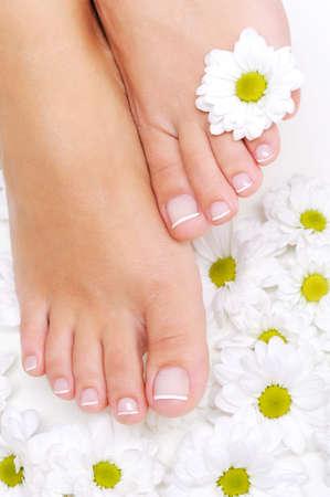 pedicura: Flores alrededor de mujer Well-groomed pies con la pedicura de belleza