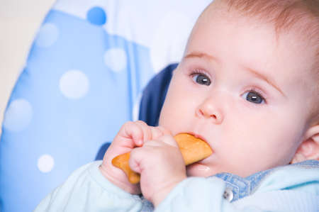 Beautiful baby eating cookie sitting in chair - indoors Stock Photo - 7817349
