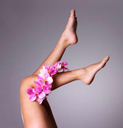 Krásné dlouhé ženské nohy s květinou. Koncept kosmetické ošetření photo