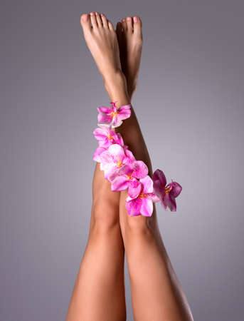 Beautiful long female legs with flower. Beauty treatment concept Stock Photo - 16410644
