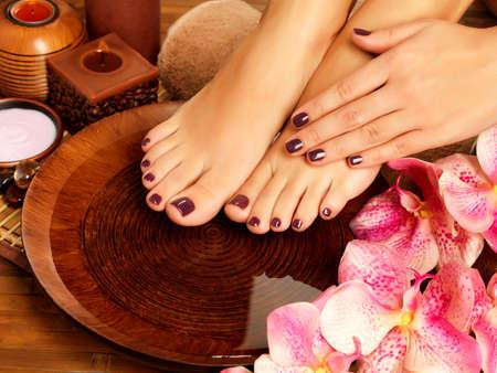 manos y pies: Primer foto de un pies femeninos en salón del balneario sobre el procedimiento de pedicura. Piernas femeninas en decoración regar las flores. Foto de archivo