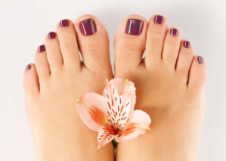 female feet: Closeup photo of a female feet with beautiful pedicure after spa procedure on white background