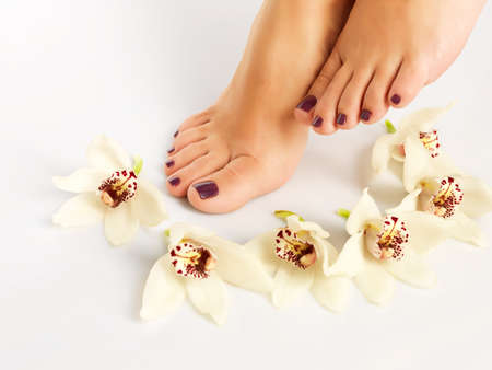 Closeup photo of a female feet with beautiful pedicure after spa procedure on white background photo
