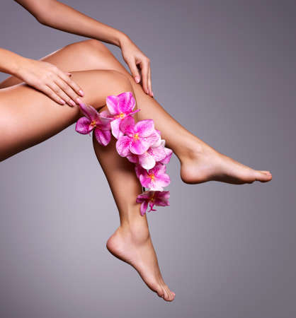 smooth skin: Beautiful long female legs with flower. Beauty treatment concept