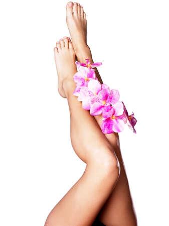 piernas mujer: Hermosas piernas largas femeninas con la flor. Belleza concepto de tratamiento Foto de archivo