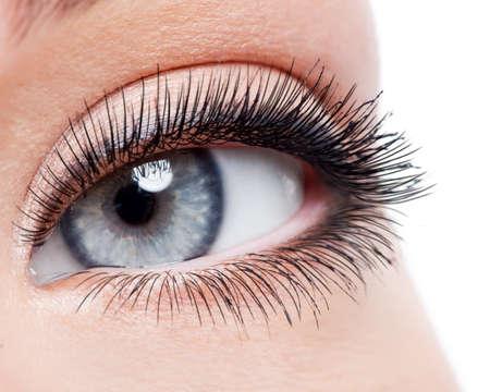 plan éloigné: Beauté féminine oeil avec curl long faux cils - macro tourné sur fond blanc