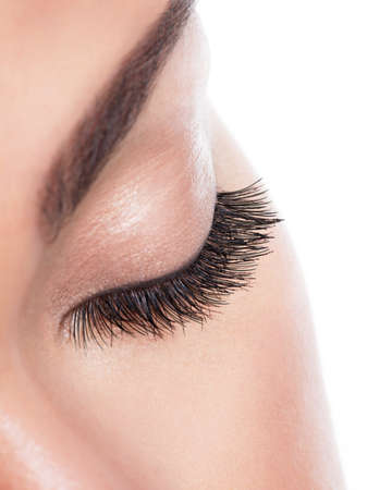 long eyelashes: macro image of  long curly eyelashes over white background