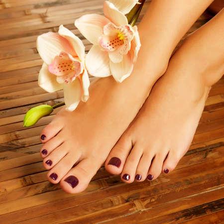 jolie pieds: Photo Gros plan d'un pied f?minin au salon de spa sur la proc?dure de p?dicure - image Flou LANG_EVOIMAGES