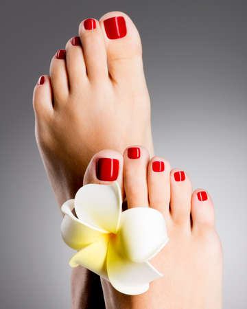 Closeup photo of a beautiful female feet with red pedicure and white flower Imagens