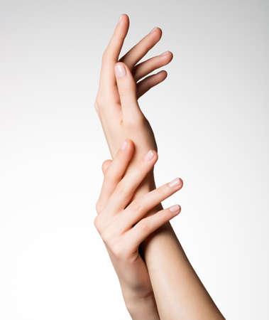 manos limpias: Foto de una hermosa elegantes manos femeninas con piel limpia y sana