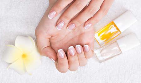 Donna in un salone di bellezza riceve manicure da un estetista. Concetto di trattamento di bellezza. Archivio Fotografico - 34216077