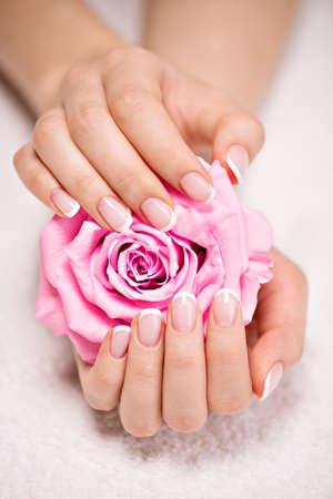 フランス語マニキュア、ピンクのバラの美しいと美しい女性の爪