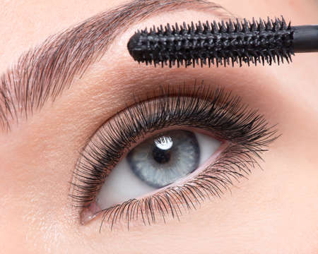 long eyelashes: Female eye with long false eyelashes and makeup brush - over white background Stock Photo