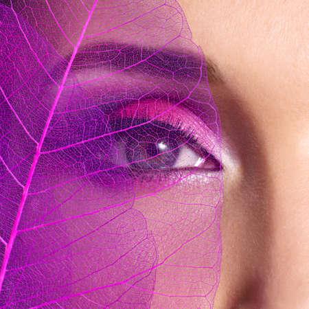 creative artist: Closeup female eye with  beautiful fashion bright pink makeup