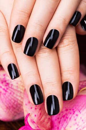 rosa negra: Mujeres hermosas manos con manicura negro después de los procedimientos de Spa - Spa concepto de tratamiento