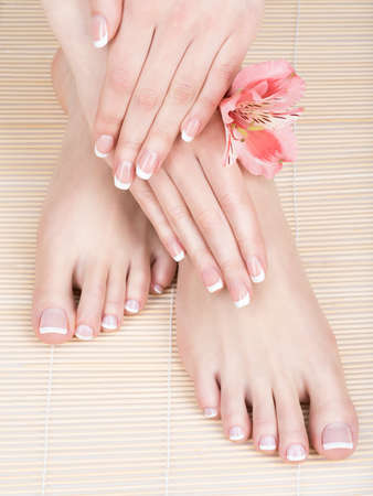 french manicure: Closeup photo of a female feet at spa salon on pedicure and manicure procedure - Soft focus image