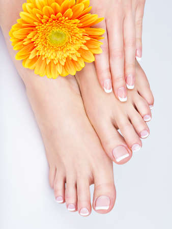 human toe: Closeup photo of a female feet at spa salon on pedicure and manicure procedure - Soft focus image