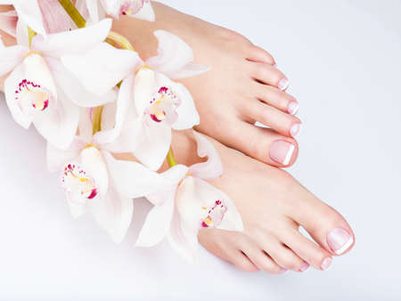 spa flower: Closeup photo of a female feet with white french pedicure on nails. at spa salon. Legs care concept