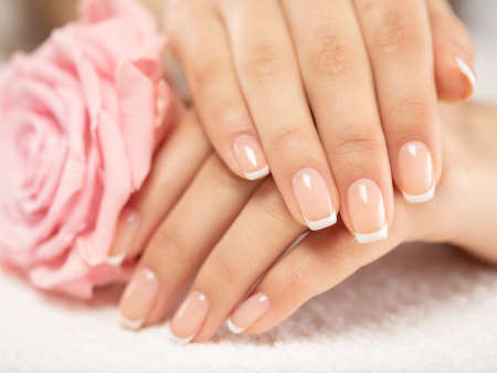 Beautiful woman's nails with french manicure and rose. Beautiful female hands. Hand care. Woman cares for the nails on hands. Beauty treatment with skin of hand. Woman's hands close-up view. Reklamní fotografie