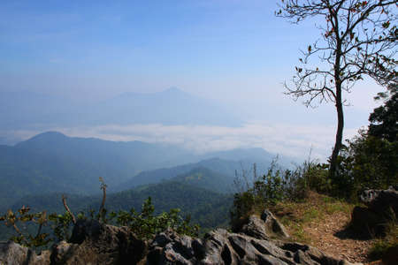 The fog in the hill Thailand Stock Photo - 8609566
