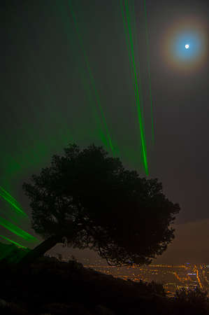 Tree observes the city from the mountain with a green glow