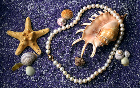 Pearl necklace with sea shell and starfishes on lilac sand photo
