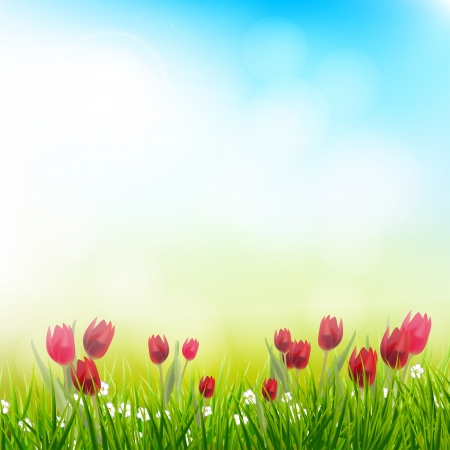 blue tulip: Spring background with tulips Illustration