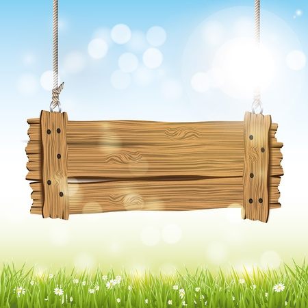 spring background: Spring background with wooden sign