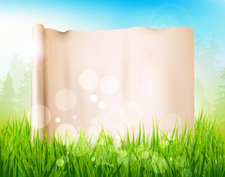hoog gras: Lente weide met hoog gras en lege papier