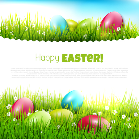 Easter eggs in the grass - Easter illustration with copyspace   Vector