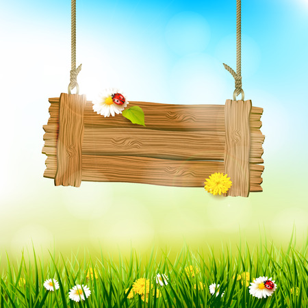 Spring background with flowers in the grass and wooden sign with place for your text