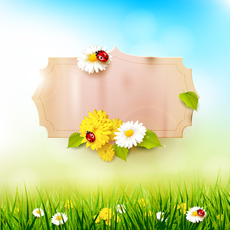 sky: Spring background with flowers in the grass and paper label with place for your text