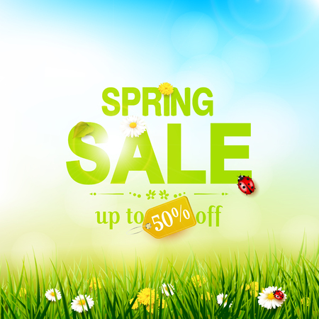 defocus: Spring sale flyer - sunny meadow with flowers and ladybugs in the grass Illustration