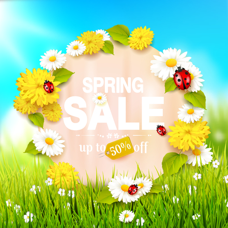 fields  grass: Spring sale flyer - sunny meadow with flowers and ladybugs in the grass Illustration