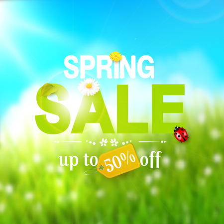 Spring sale flyer - sunny meadow with flowers and ladybugs in the grass Illustration