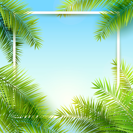 tropical: Summer time background with place for your message