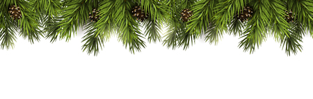 Christmas border with fir branches and pine cones on white background Vectores