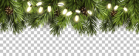 Christmas border with fir branches and pine cones on transparent background Vectores