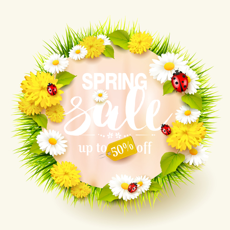 Spring sale background with flowers, grass and ladybug. 矢量图像