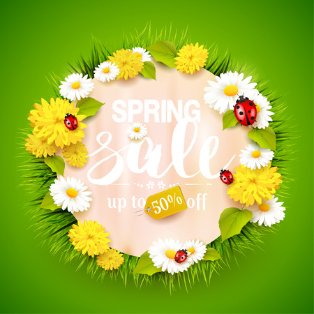Spring sale background with flowers, grass and ladybug on green background.
